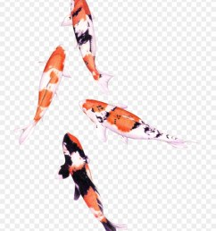 koi fish png graphic royalty free stock png water color fish clipart [ 880 x 1122 Pixel ]
