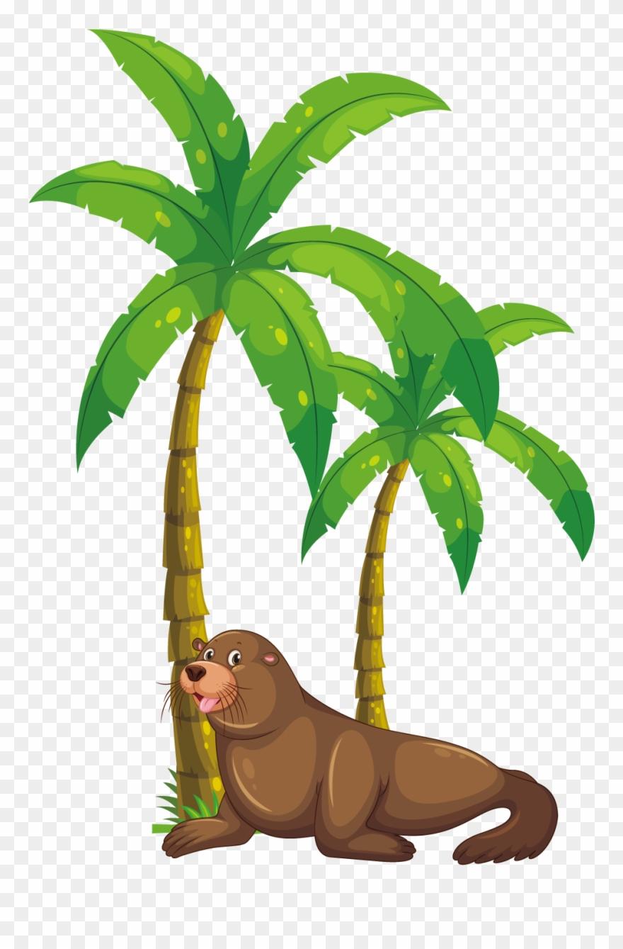 medium resolution of palm tree clipart kerala coconut tree monkey eating banana clipart png download