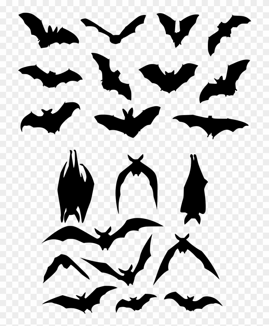medium resolution of bat flight silhouette logo bat silhouette clipart