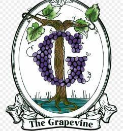 grapevine clipart illustration png download [ 880 x 1134 Pixel ]