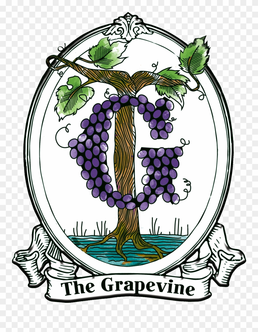 hight resolution of grapevine clipart illustration png download
