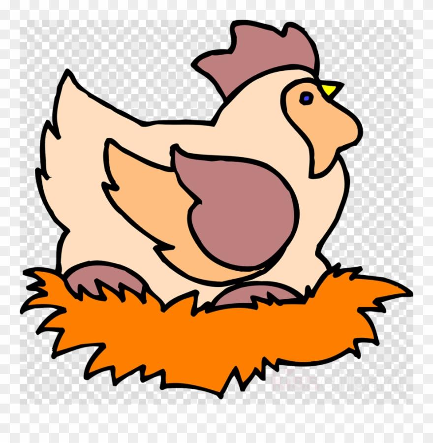 hight resolution of chicken on nest clipart chicken clip art chicken png download