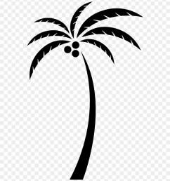 coconut arecaceae tree clip art clip art coconut tree png transparent png [ 880 x 1003 Pixel ]