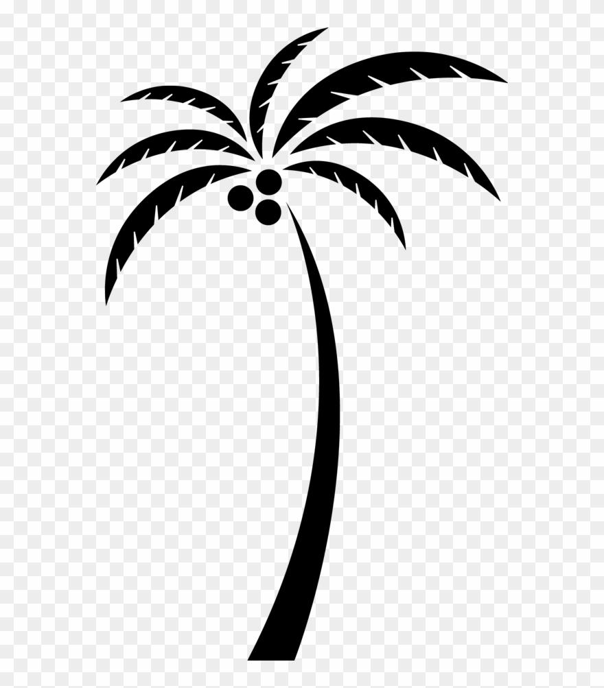 hight resolution of coconut arecaceae tree clip art clip art coconut tree png transparent png