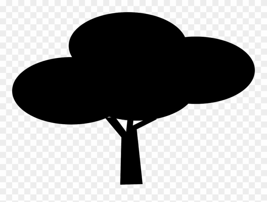 nature tree plant free