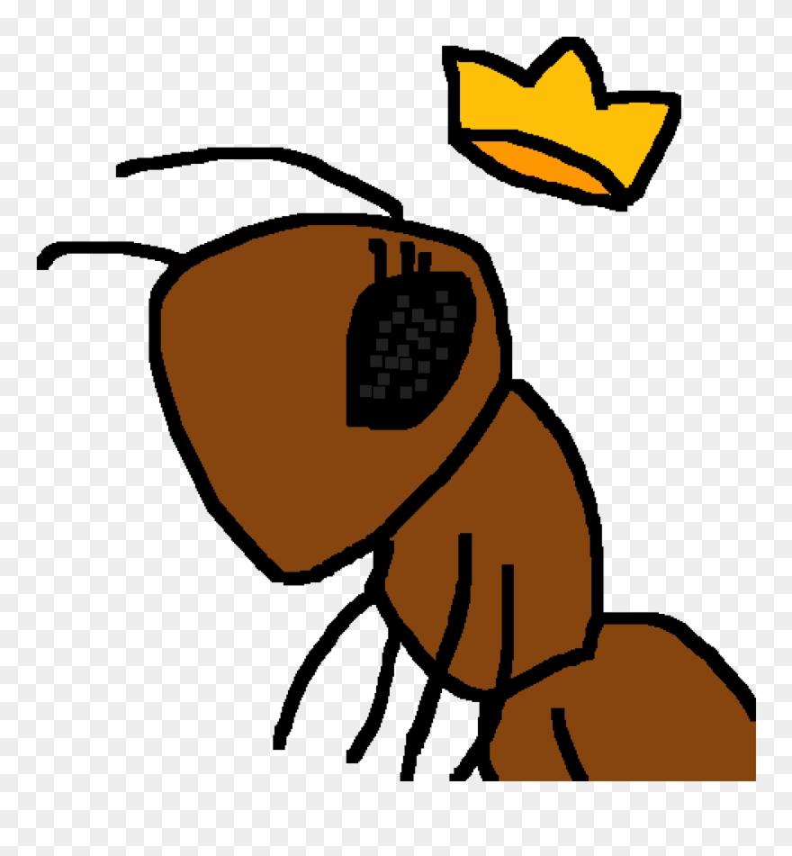 hight resolution of queen ant clipart