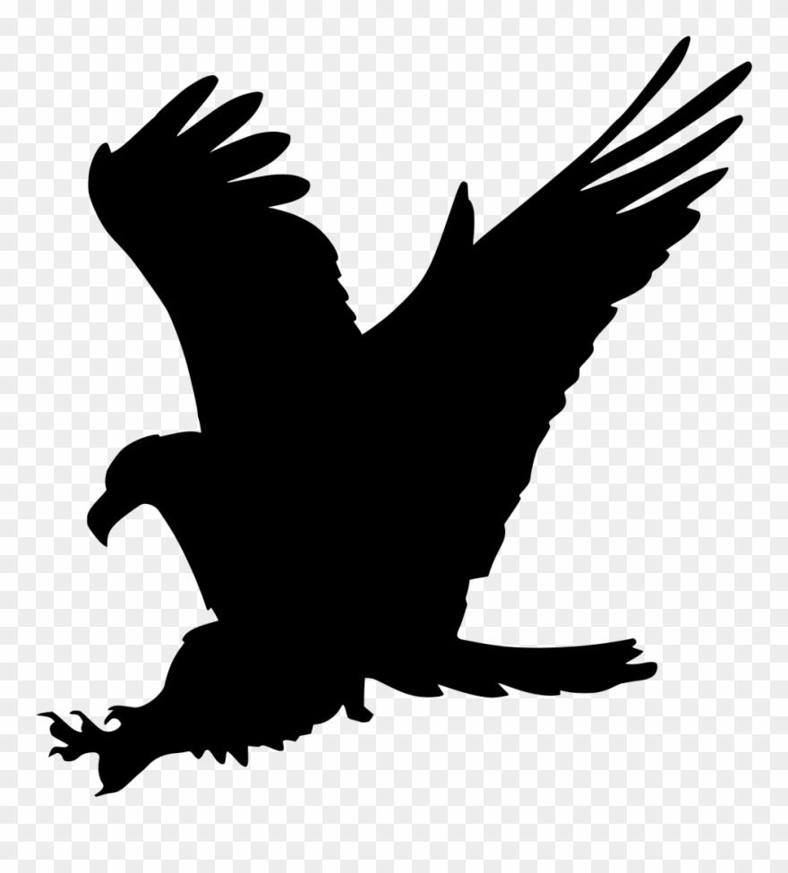 Gambar Burung Elang Kartun Keren