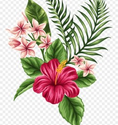 svg transparent tropical watercolor flowers leaves tropical flower tattoo clipart [ 880 x 1200 Pixel ]