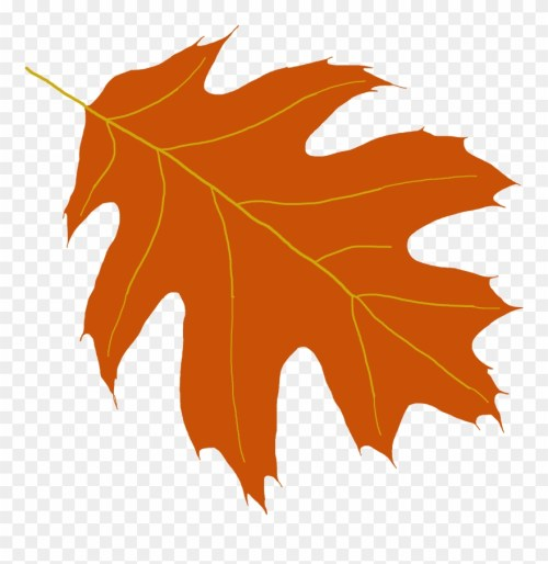 small resolution of oak leaf clipart maple leaf png download