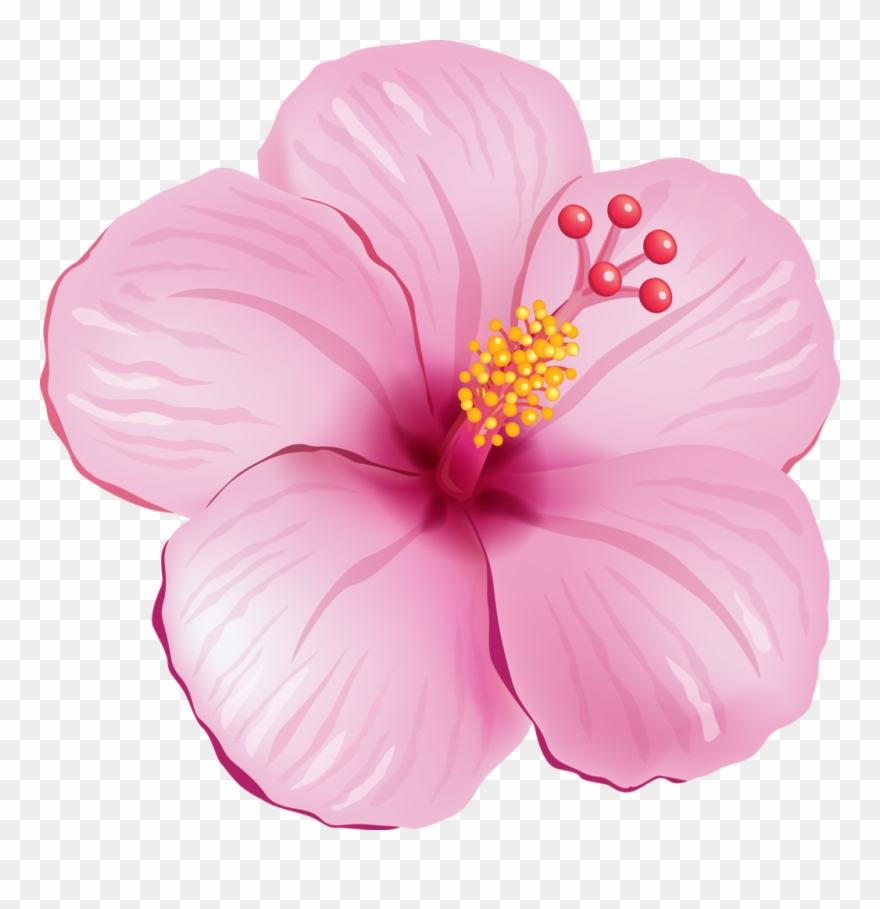 hight resolution of tropical flower clipart tropical pink flower png transparent png
