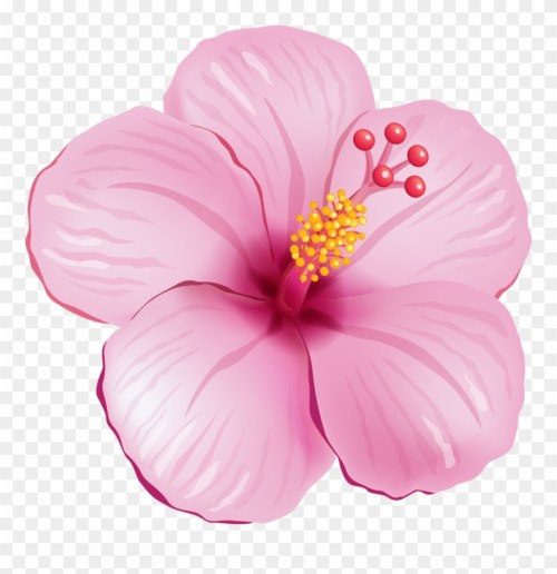 small resolution of tropical flower clipart tropical pink flower png transparent png