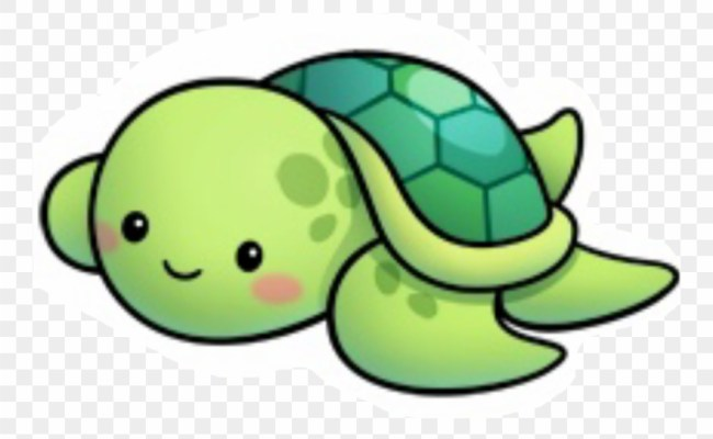 Cute Pictures Of Sea Turtles Wallpaperall