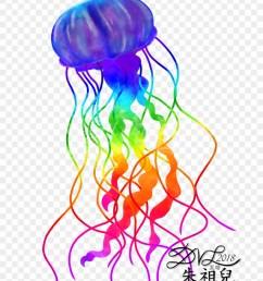 774 x 1032 1 jellyfish clipart [ 880 x 1074 Pixel ]