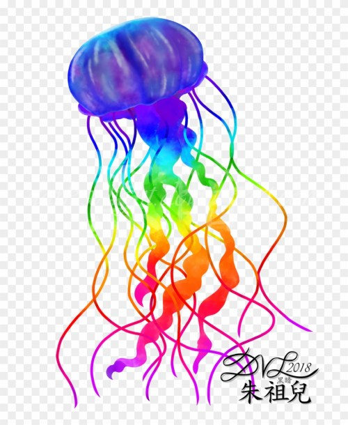 small resolution of 774 x 1032 1 jellyfish clipart