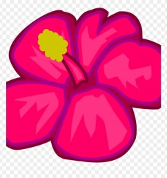 hawaiian flower clipart hawaiian flower clip art clipart draw a tropical flower png download [ 880 x 920 Pixel ]