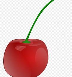 cherries clip art download cherry clipart png download [ 880 x 1201 Pixel ]