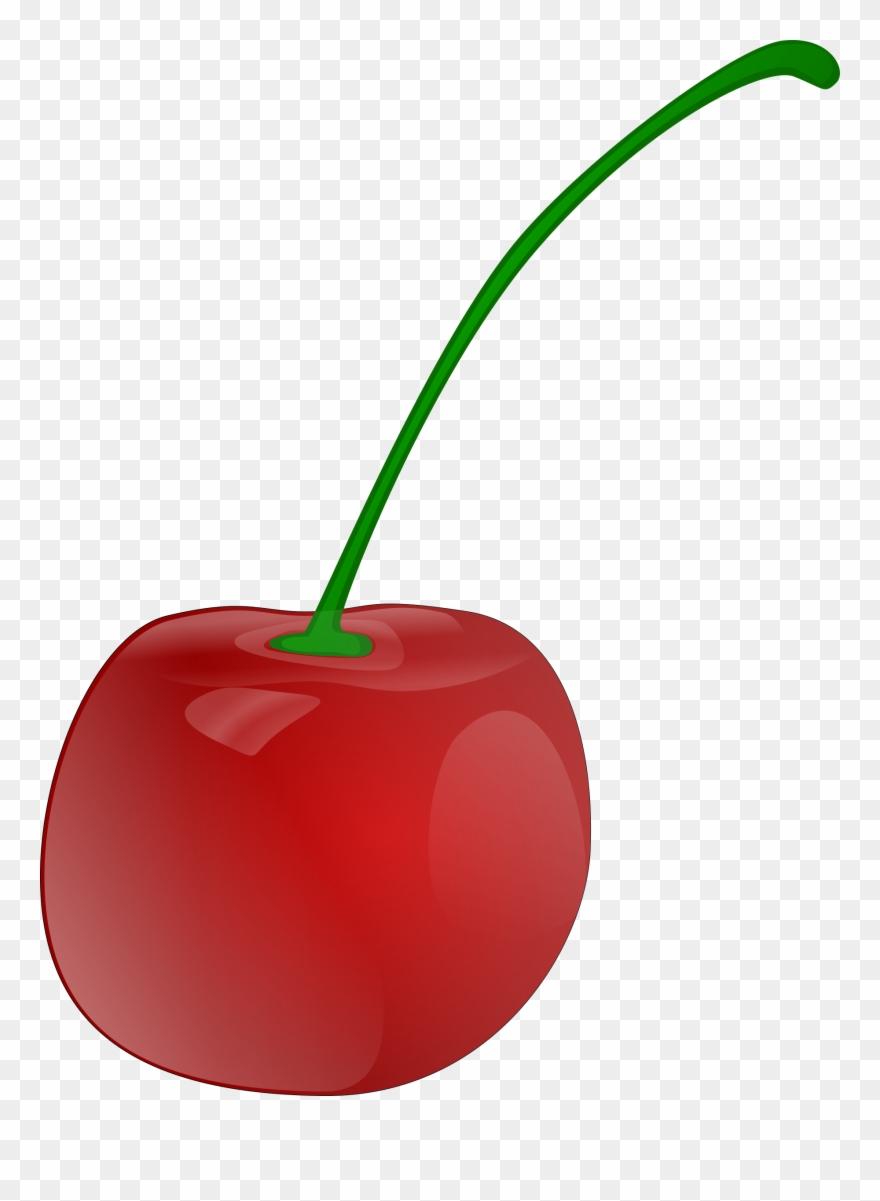 medium resolution of cherries clip art download cherry clipart png download
