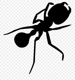 ant big image png silhouette ant clipart [ 880 x 972 Pixel ]
