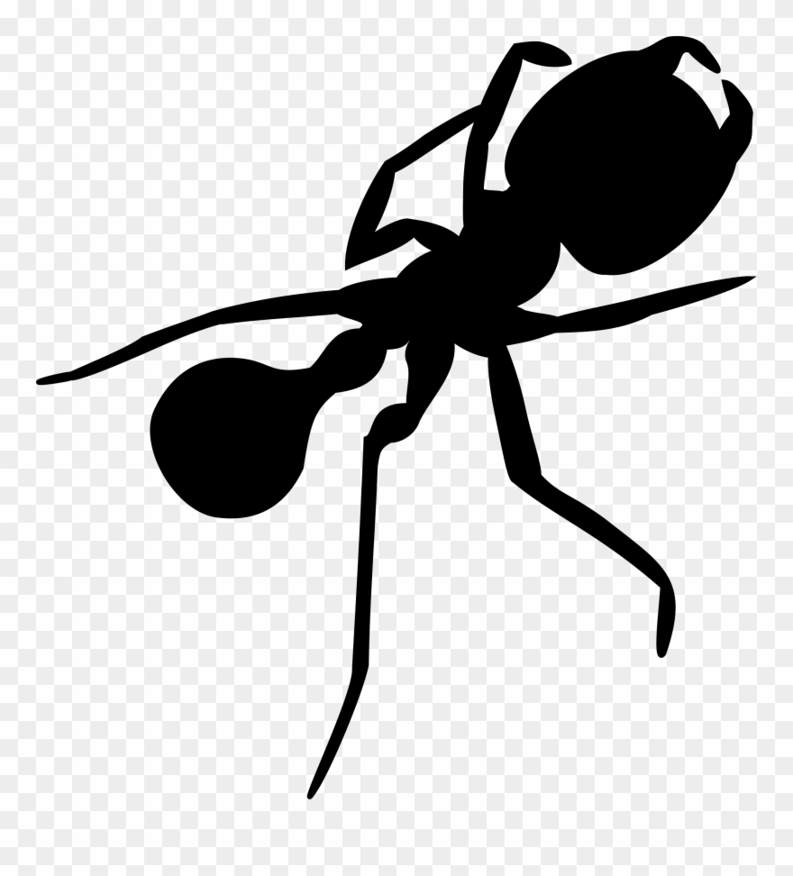 medium resolution of ant big image png silhouette ant clipart