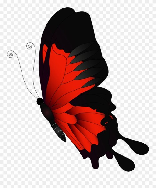 small resolution of graphic library stock flying butterfly clipart butterfly clip art flying png download