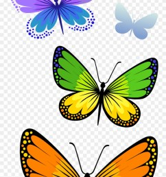 half butterfly cliparts free download clip art png format butterfly clipart png transparent png [ 880 x 1828 Pixel ]