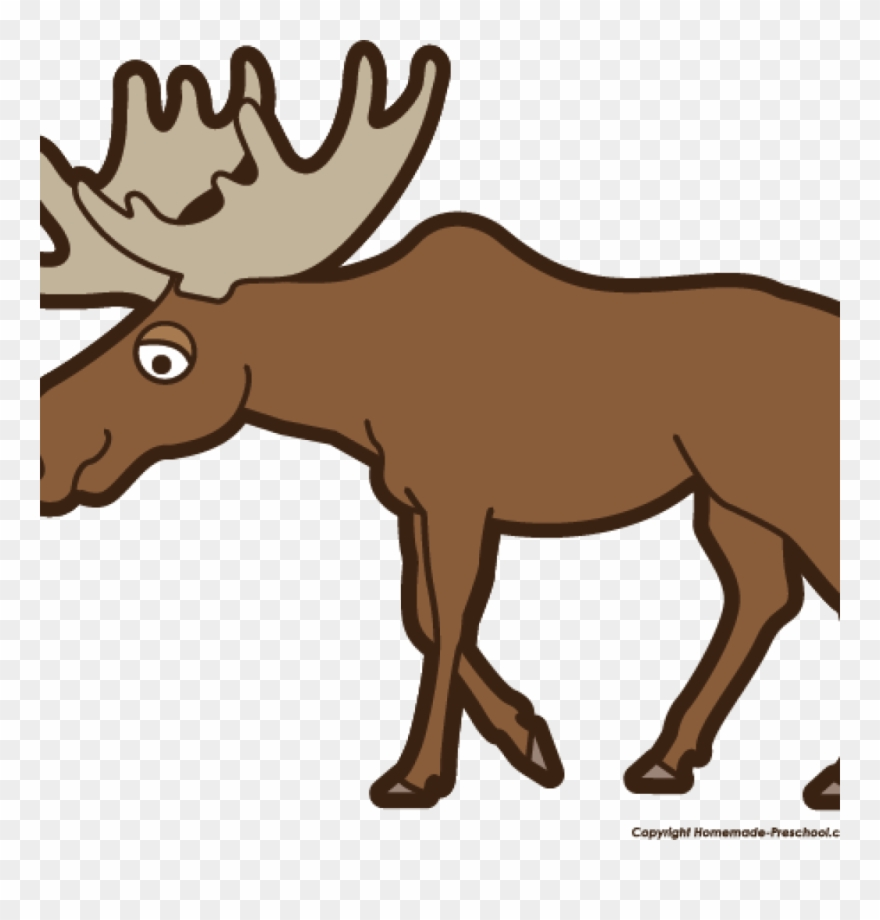 hight resolution of moose clipart 27 free labor day clip clip art moose png download