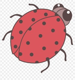 beetle clipart cute cute bug drawing png transparent png [ 880 x 901 Pixel ]