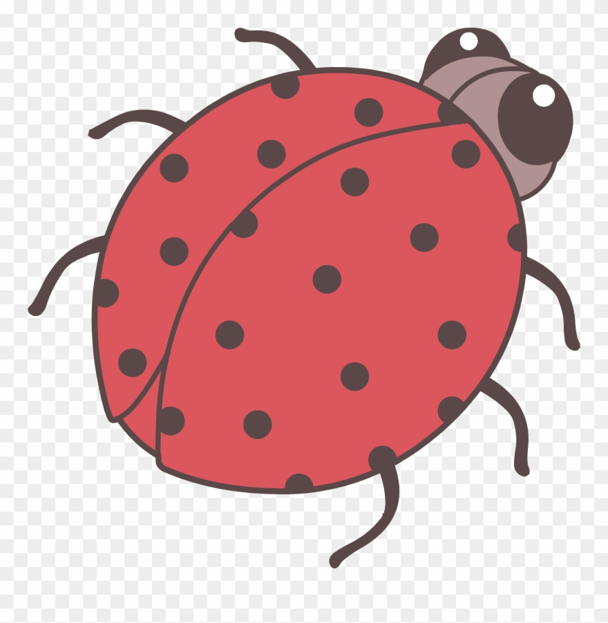 medium resolution of beetle clipart cute cute bug drawing png transparent png