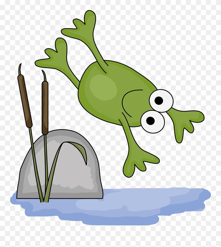 hight resolution of First Grade Amphibians Worksheet Clipart (#5423683) - PinClipart