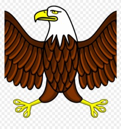 eagle images clip art eagle clipart free graphics of aguila dibujo a color png [ 880 x 920 Pixel ]