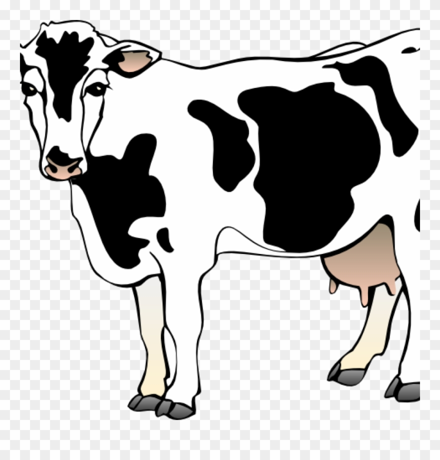 hight resolution of free cow clipart cow clipart cow 11 clip art vector clipart of cow png