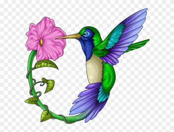 hummingbird clip art 19