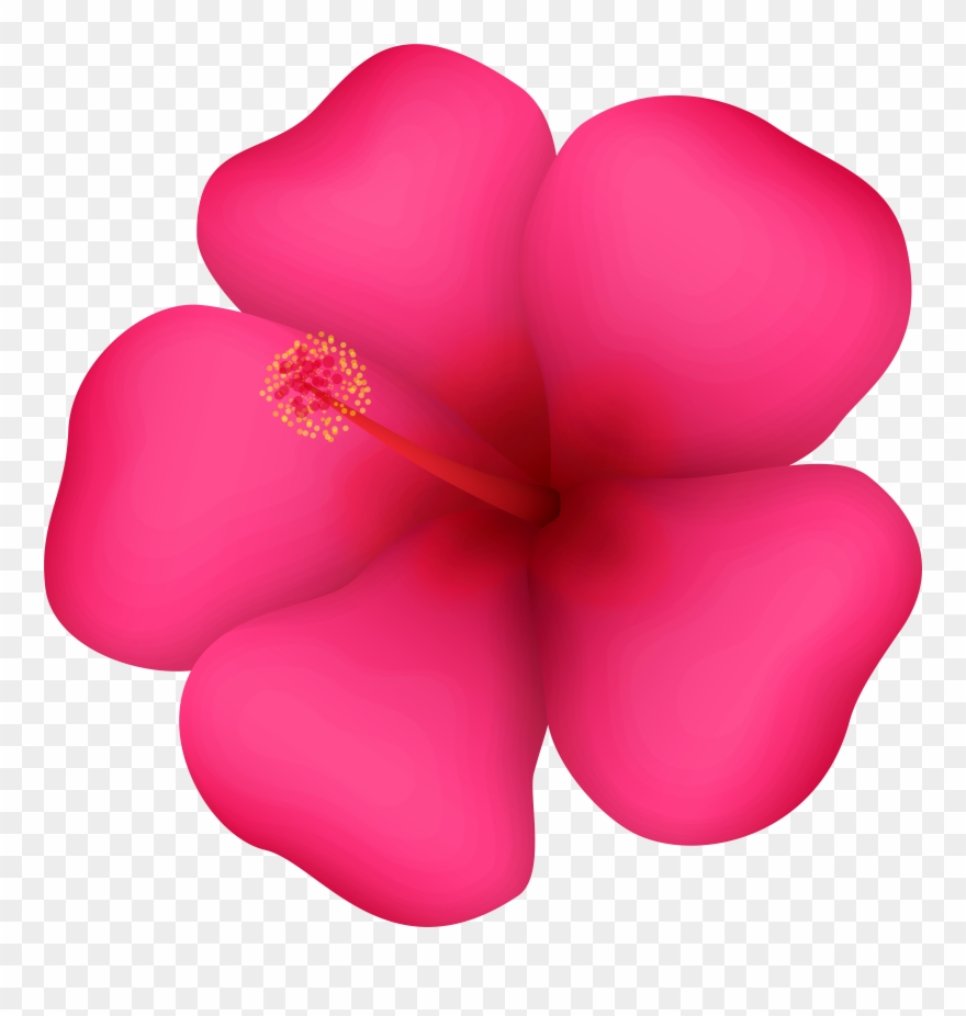 hight resolution of tropical flower clipart png download