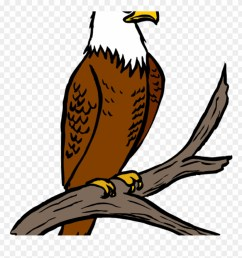 free eagle clipart eagle feather clipart at getdrawings eagle on tree clipart png transparent png [ 880 x 926 Pixel ]