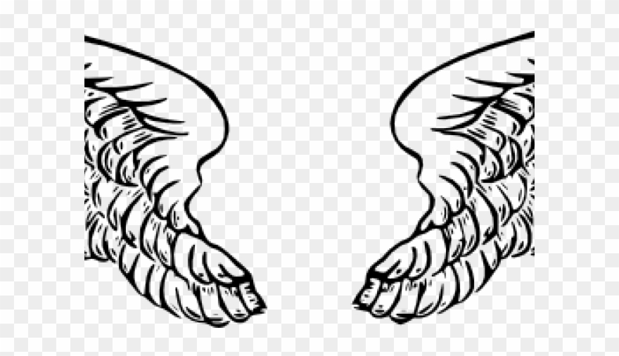 wings clipart vector clip