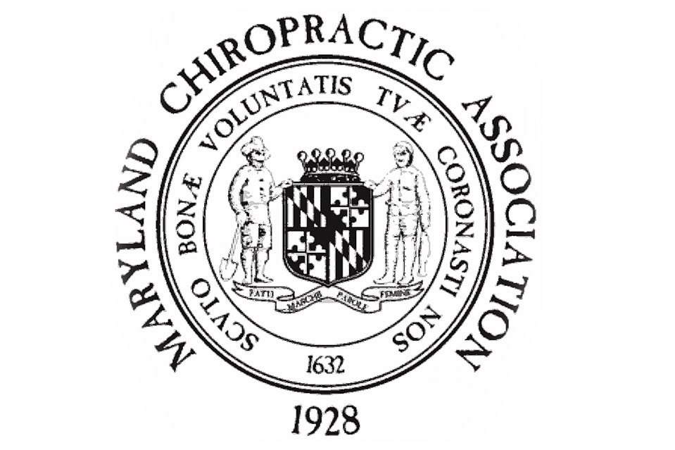 Chapter 8: Qualifications Of A Chiropractor In Maryland