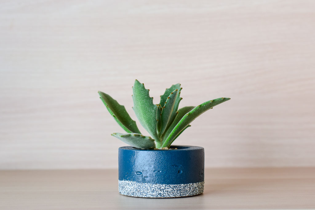 blue-stone-handmade-pot-with-succulent-