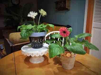 Chalkboard pot and twine covered pot
