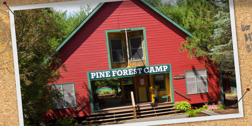 Home  Pine Forest Camp
