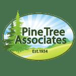 Pine Tree Associates club logo