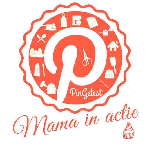 PinGetest Mama in actie blog logo