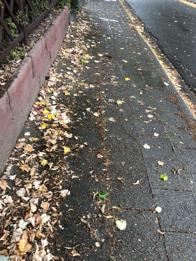 herfst knutsel inspiratie herfstactiviteiten herfstbladeren