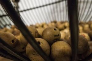 ¿dónde invertir el gordo de la lotería de navidad?