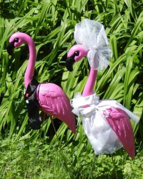 2 HUGE PINK FLAMINGOS With Bride Groom Clothing Outfits