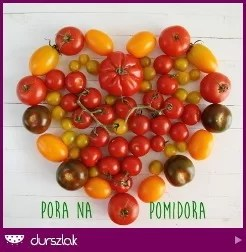 Pora na pomidora!