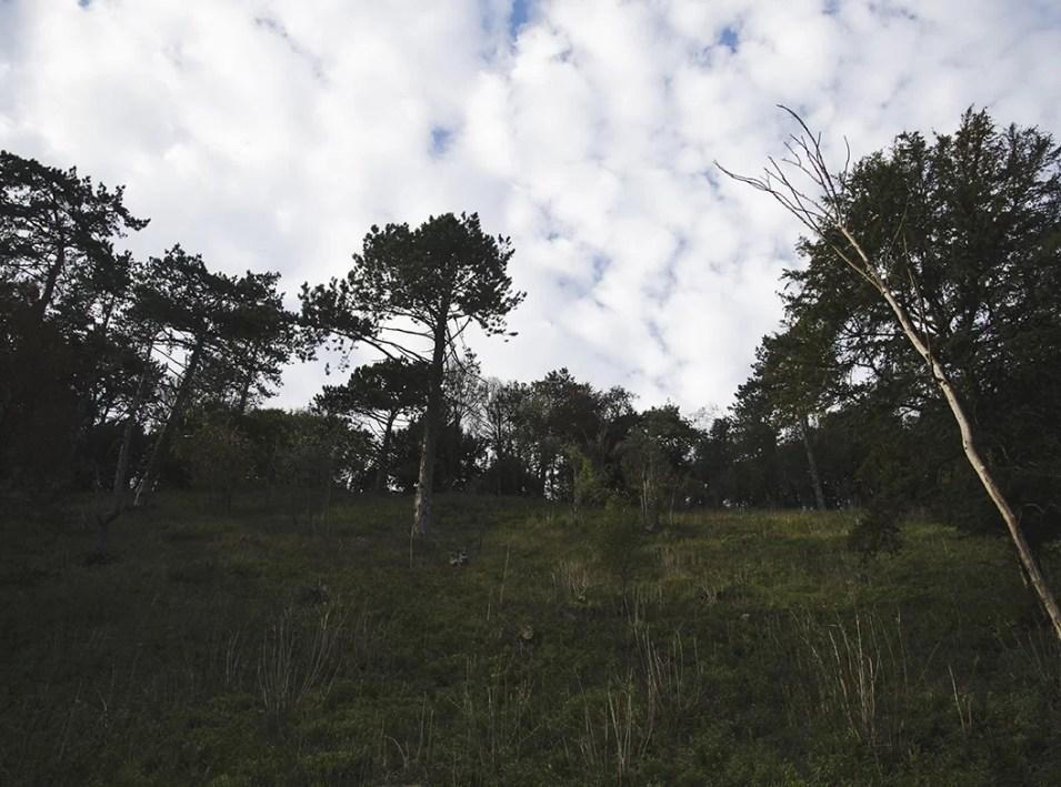 Bristol jesien parki
