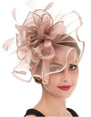 Light Pink Fascinator Haojing Feather Mesh Flower on a Headband and a Clip Royal Tea Party Derby Headwear for Girls and Women