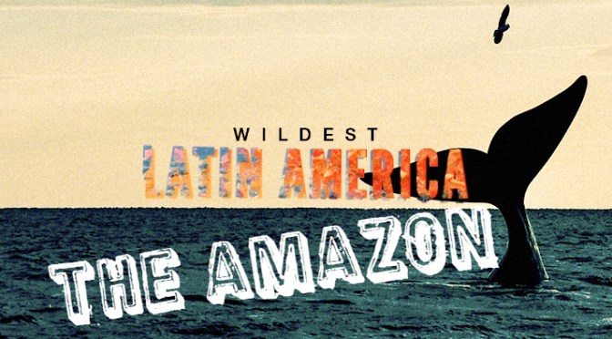 Wildest Latin America – <em>The Amazon </em>