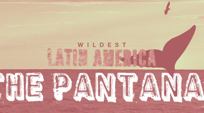 Wildest Latin America – <em> The Pantanal! </em>