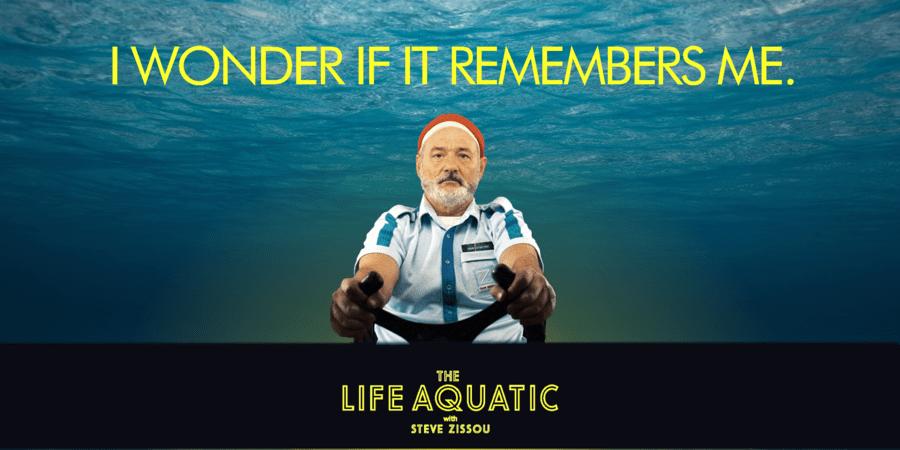 4ea48c309 The Life Aquatic with Steve Zissou – Pink Ink